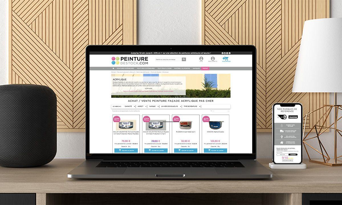 cr ation site web pour entreprise de peinture pas cher. Black Bedroom Furniture Sets. Home Design Ideas